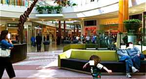 The IPad 2 line in the Millennium Mall Was the Length Of the Mall Times 3